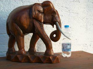 Große Holzfigur Holzelefant 4,  6 Kg 35 Cm Stoßzähne Skulptur Statue Figur Teak Bild