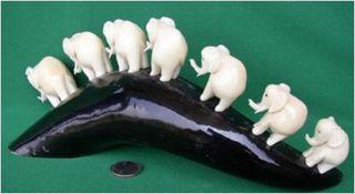 Elefanten Aus Der Tagua Nuß Auf Rinderhorn,  Pflanzliches Elfenbein Bild
