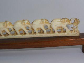 Elefanten Aus Bein Indien Bild