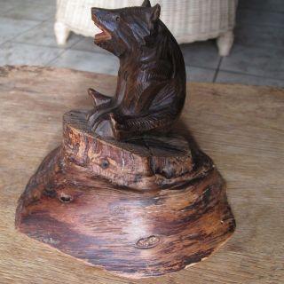 Antiker,  Kleiner Brienzer Holzbär Auf Baumsockel Sitzend,  Mit Glasaugen Bild