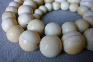 Altes Collier Halskette Rund Perlen 0,  8 Bis 1,  7cm Beinkette Um 1900 Länge 52cm Bild