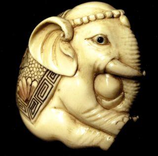 Netsuke,  Elefant,  Japan Um 1910 Meiji - Periode,  Bein Geschnitzt Signiert Bild