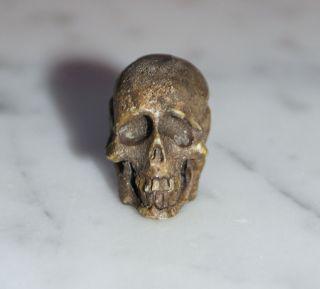 Totenkopf Bein Geschnitzt - 19.  Jahrhundert - Memento Mori,  Skull (3021) Bild