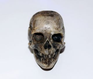 Totenkopf Bein Geschnitzt - 18.  /19.  Jahrhundert - Memento Mori,  Skull (2962) Bild