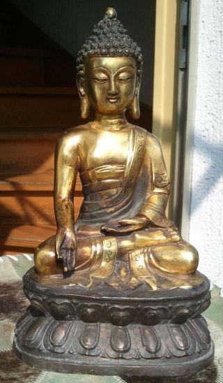 Amitabha Buddha Status Bronze 3 Kg Asiatica Tibet China 20.  Jhht Bild