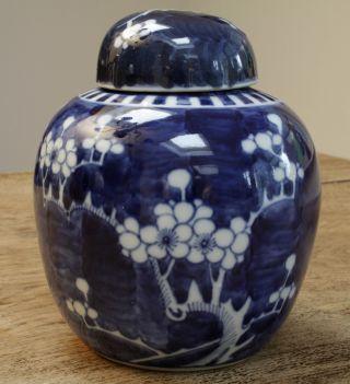 China Ingwertopf Deckelgefäß Porzellan Prunus Dekor Doppelring Bild