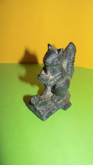 Eichhörnchen Speckstein ? Canada Kanada Bild