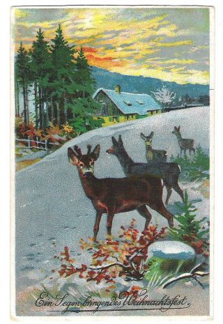 Postkarte Litho Ein Segen Bringendes Weihnachtsfest Rehe Jagd Künstlerkarte 1915 Bild