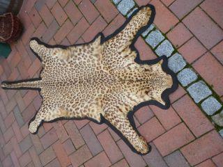 Geparden Fell,  Gepard Mit Cites,  Groß Bild
