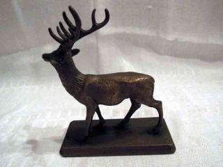 Hirsch Jagd Figur Bronze Fast 1 Kg Schwer Jagdzimmer Hirsch 10 Ender Bild