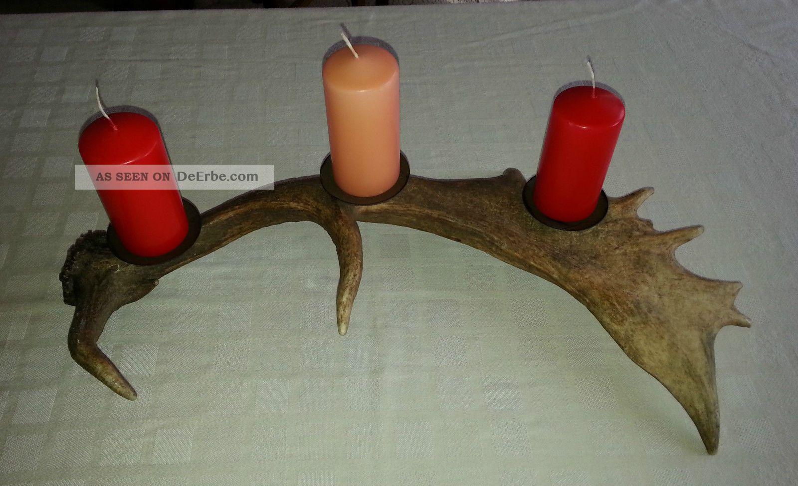 Kerzenleuchter Damschaufel Geweih Damhirsch Hirsch ...