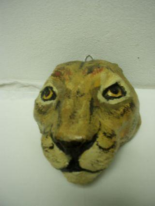 Schöner Modelierter Kopf Eines Leoparden Bild
