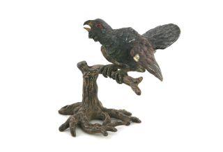 Wiener Bronze,  Auerhahn Sitzend Auf Ast,  Buntbemalt,  Um 1900 Bild