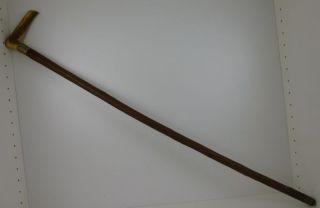 Spazierstock Mit Geweihgriff Um 1900 (83 - 12) Bild