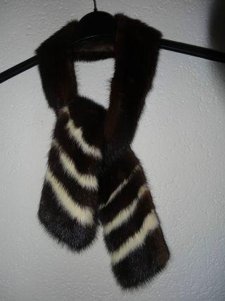 Wunderschöner Schal / Damenkrawatte Aus Echtem Nerz Vom Anfang Der 60er Jahre Bild