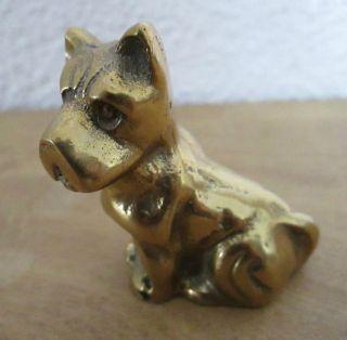 Alte Sehr Schöne Massive Bronze Messing Figur Skulptur Hund Schwer Setzkasten Bild
