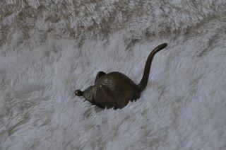 Alte Kleine Messing Maus Bild