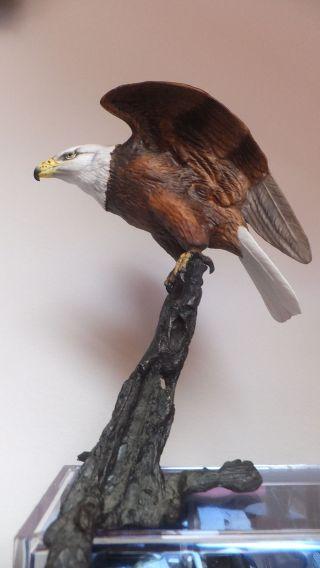 Bronce Arbeit See Adler England Bild