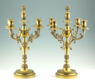 Paar Französische Empire Bronze Kandelaber Kerzen Leuchter 1860 9kg Candelholder Bild