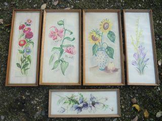 5 Alte Aquarelle Floral Gerahmt Hinter Glas Z.  T.  Signiert Bild