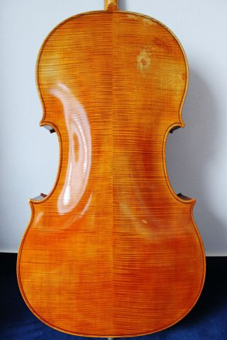 Feines Altes Meister - Cello 4/4 (nr.  2) Old Cello Nur 5tage Bild