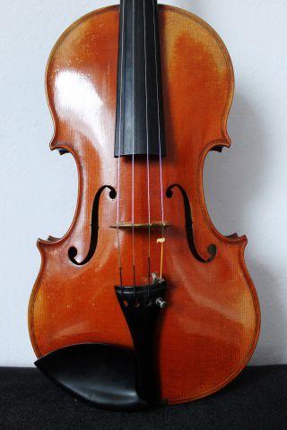 Schöne Alte Violine Old Violin Nur 5 Tage Bild