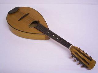 Flachbauch - Mandoline: 8 - Saitig / 4 - ChÖrig: 1950er Jahre Bild