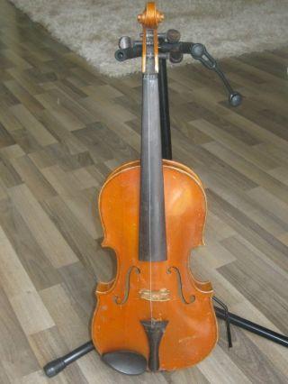 Alte Geige Violine Bild
