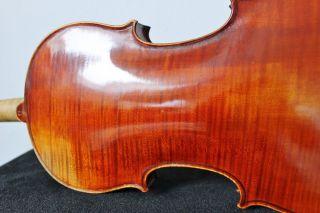 Feine Alte Französische - Violine Old Violin Nur 5tage Bild