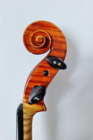 Feine Alte Meister - Violine Old Violin Nur 5tage Bild