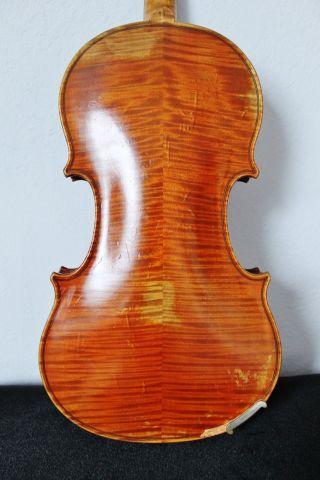Feine Alte Violine Old Violin Nur 5tage Bild