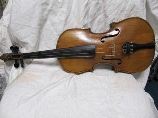 Uralte Geige Violine Mit Löwenkopf Und Innenzettel Bild
