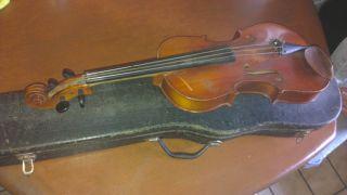 Geige Antonius Stradivarius Faciebat 1721 Bild