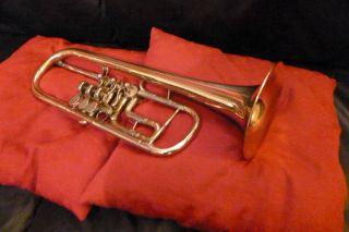 Trompete / Bb - Konzerttrompete Deutsche Trompete 140mm Becher Bild