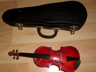 Minigeige/violine Für Sammler Bild