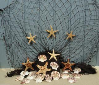 Fischernetz 2 X 4m Braun Mit 7 Seesternen Und 15 Muscheln Für Die Maritime Deko Bild