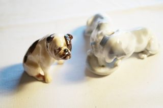 Royal Doulton Bone China Bulldogge,  Figurengruppe 2 Hunde Von Metzler&ortloff Um Bild