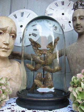 Globe Dome Engelsflügel Shabby Chic Glas Dom Gloche Ailes D ' Ange Angel Wings Jdl Bild