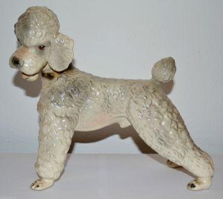 Orig.  Rudolf Sommerhuber Keramik Pudel Aus Den C1960 / Steyr Hund Figur Dog Bild