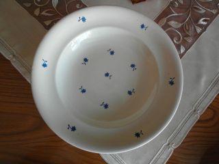 Teller,  Mittagsteller,  Suppenteller,  60 Jahre Alt,  Naturfarben,  Mit Blauen Blumen Bild