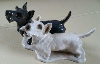 Rosenthal - 2 Scottish Terriers - Heidenreich Mit Signatur - Hunde Bild