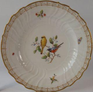 Teller Kpm Berlin Von Hand Bemalt Canary Plate Hand - Painted Porcelain Bild