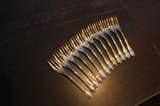 Kleine Gabeln Silber,  Gepunzt 800 Und Krone,  12 Teile Bild