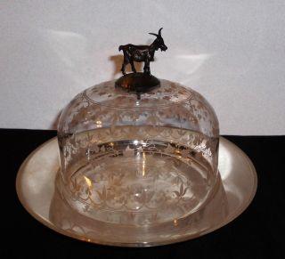 Elegante Käseglocke Glas Mit Silbernodus,  Wohl Frankreich,  19.  Jahrhundert Top Bild