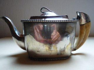 Antike Silberne Teekanne,  Kanne Mit Keilerzahn Sehr Selten Um Ca.  1900 Bild