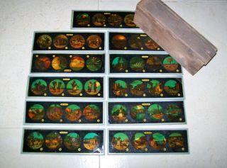 Laterna Magica - 11 Tafeln - Bilderplatten Alle Aus Einer Serie Bild