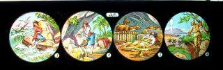 Antike Bildplatte Mit 4 Glasbildern Märchen Für Laterna Magica Um 1900 Rar,  SchÖn Bild
