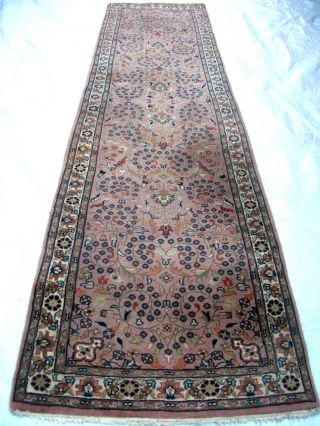 Villenauflösung Prezioso Saruq 344cm X 92cm Bild