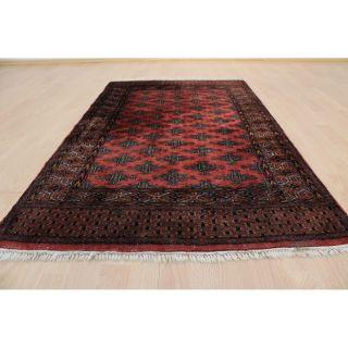 Prachtvoller Handgeknüpfter Orientteppich Buchara Yomut Tapis 90x150cm Rug 219 Bild