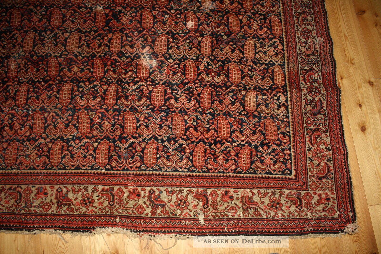 antiker persischer teppich ferraghan 278 x 168. Black Bedroom Furniture Sets. Home Design Ideas